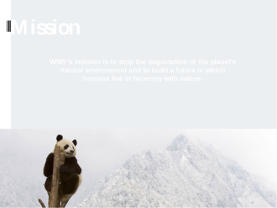 Mission WWF's mission is to stop the degradation of the planet's natural envi...