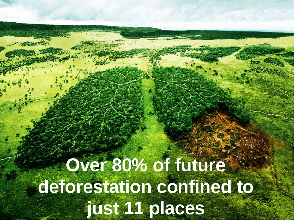 Over 80% of future deforestation confined to just 11 places