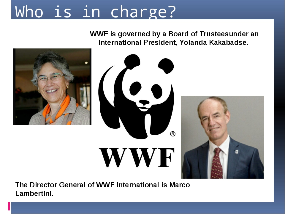 Who is in charge? WWF is governed by a Board of Trusteesunder an Internationa...