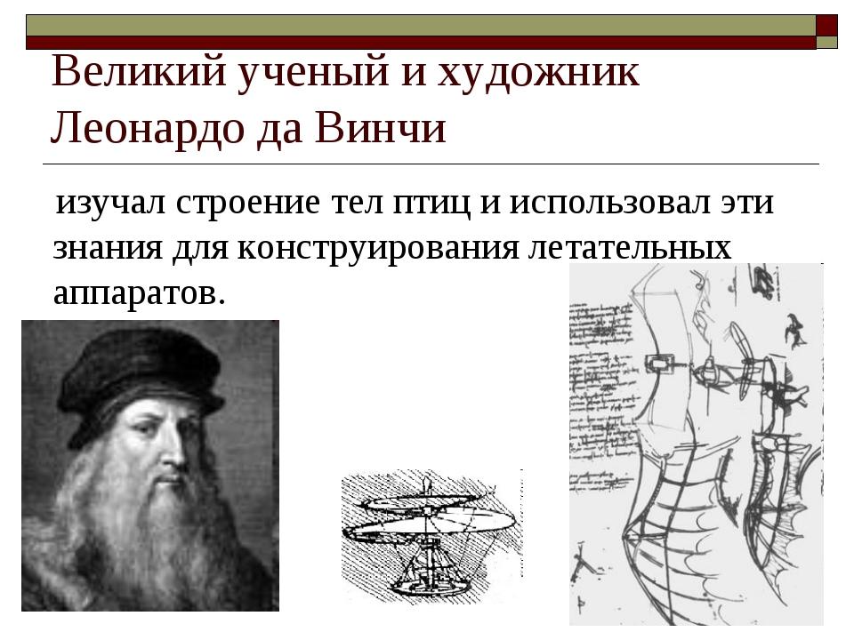 Великий ученый и художник Леонардо да Винчи изучал строение тел птиц и исполь...
