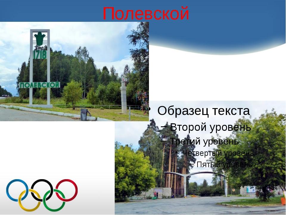 Двукратный чемпион России (2000 и 2008), семикратный серебряный призёр чемпио...