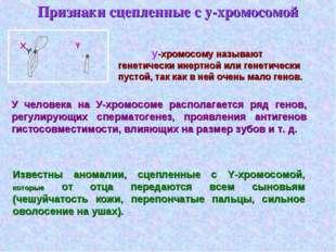 Признаки сцепленные с у-хромосомой у-хромосому называют генетически инертной