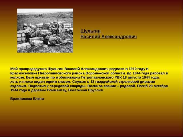 Мой прапрадедушка Шульгин Василий Александрович родился в 1910 году в Краснос...