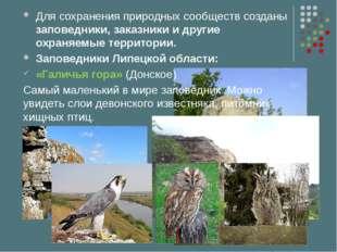 Для сохранения природных сообществ созданы заповедники, заказники и другие ох