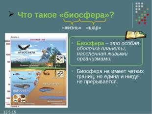 Что такое «биосфера»? Биосфера – это особая оболочка планеты, населенная живы