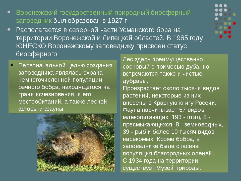 Воронежский государственный природный биосферный заповедник был образован в 1...