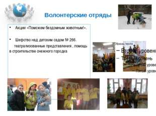 Волонтерские отряды Акции «Поможем бездомным животным!». Шефство над детским