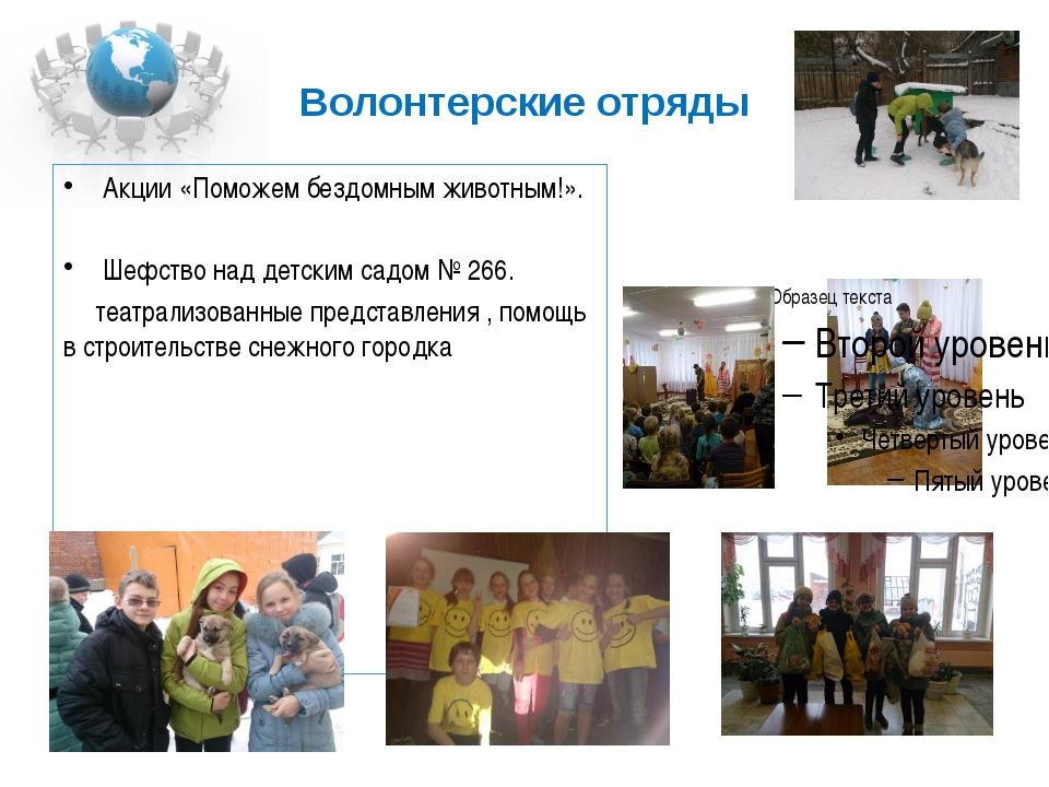 Волонтерские отряды Акции «Поможем бездомным животным!». Шефство над детским...