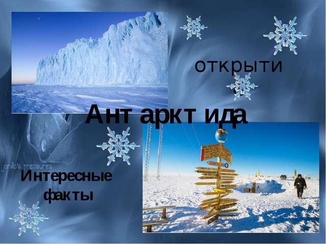 Антарктида открытие Интересные факты