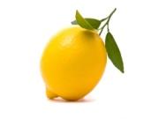 10-lemon-bulgarian-vocabulary-limon.jpg