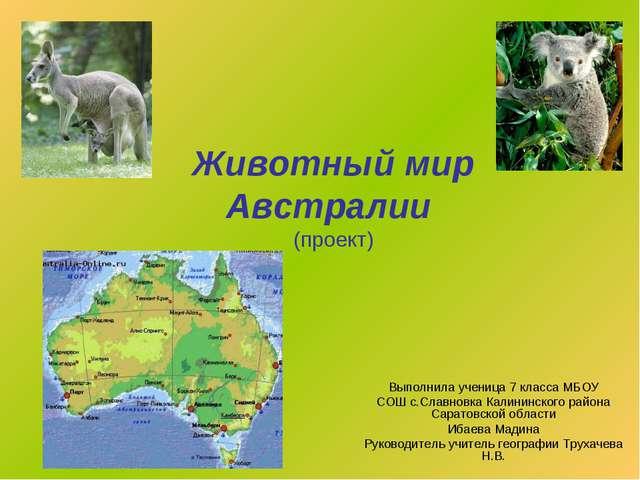 Животный мир Австралии (проект) Выполнила ученица 7 класса МБОУ СОШ с.Славнов...