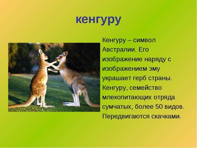 кенгуру Кенгуру – символ Австралии. Его изображение наряду с изображением эму...