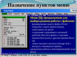 Назначение пунктов меню Меню File предназначено для выбора режима работы с фа