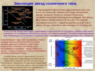 Эволюция звезд солнечного типа У образующейся протозвезды ядро втягивает все,