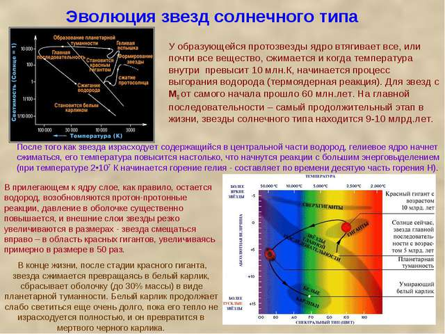 Эволюция звезд солнечного типа У образующейся протозвезды ядро втягивает все,...