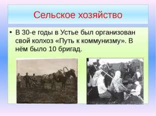 Сельское хозяйство В 30-е годы в Устье был организован свой колхоз «Путь к ко