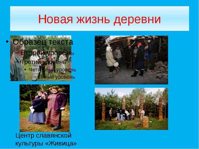 Новая жизнь деревни Центр славянской культуры «Живица»
