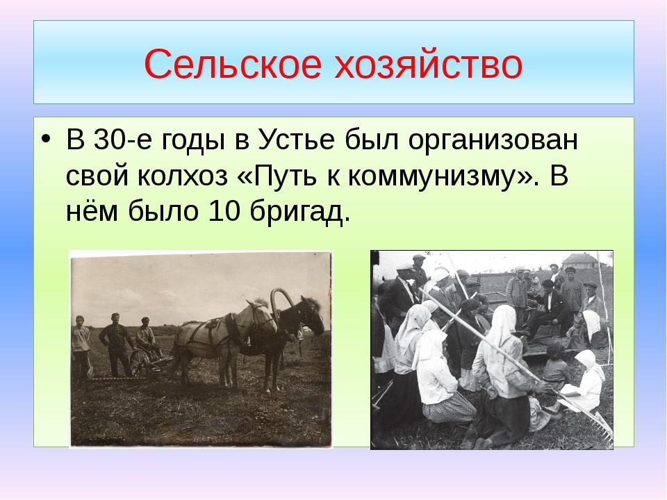 Сельское хозяйство В 30-е годы в Устье был организован свой колхоз «Путь к ко...