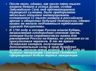 После того, однако, как около пяти тысяч казаков бежало в устье Дуная, создав