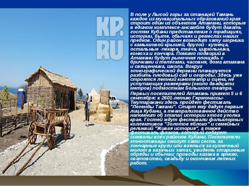 В поле у Лысой горы за станицей Тамань каждое из муниципальных образований кр...