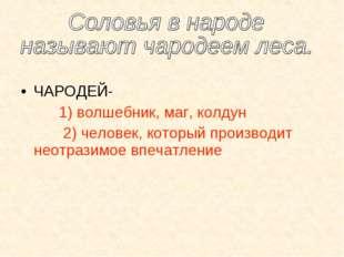ЧАРОДЕЙ- 1) волшебник, маг, колдун 2) человек, который производит неотразимо