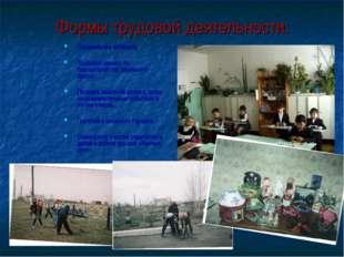 Формы трудовой деятельности: Оформление кабинета; Трудовой десант по благоуст