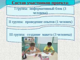 Состав участников проекта: I группа: информативный блок (3 человека) II груп