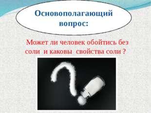 Основополагающий вопрос: Может ли человек обойтись без соли и каковы свойства