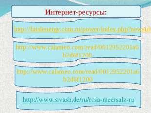 Интернет-ресурсы: http://www.calameo.com/read/0012952201a6b2d6f1200 http://ww