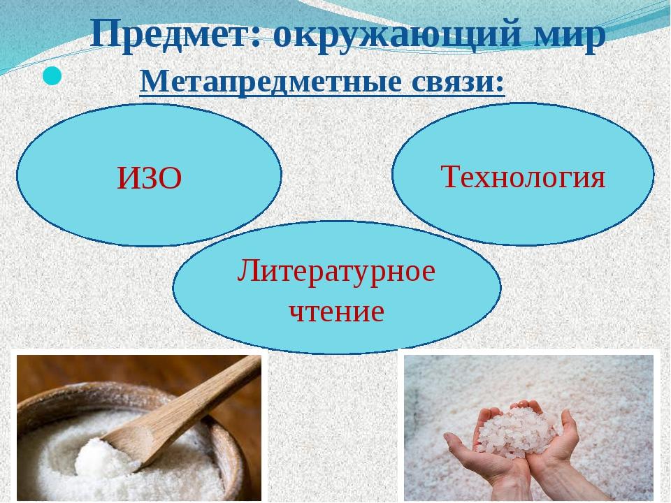 Предмет: окружающий мир Метапредметные связи: ИЗО Технология Литературное чт...
