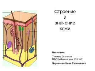 Строение и значение кожи Выполнил: Учитель биологии МБОУ»Левковская СШ №7 Чер