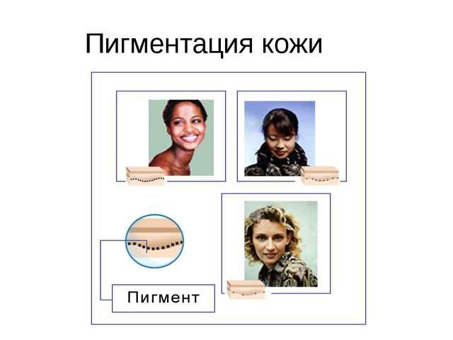 Пигментация кожи