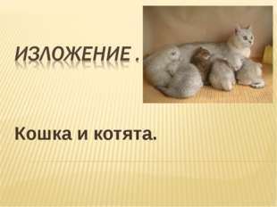Кошка и котята.