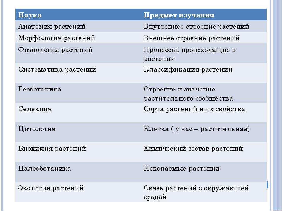 Наука Предмет изучения Анатомия растенийВнутреннее строение растений Морфол...