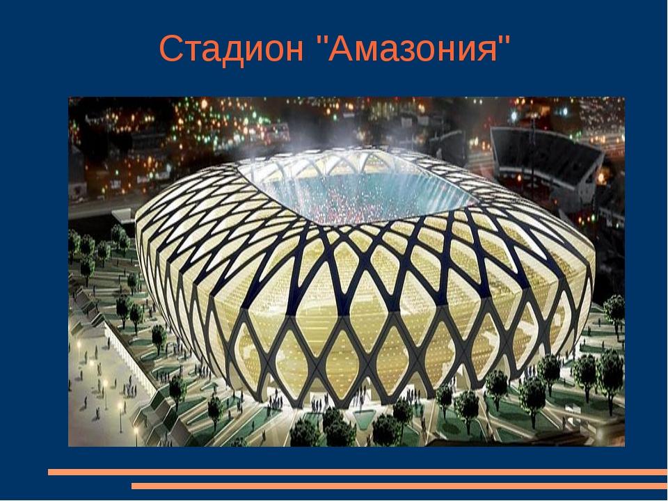 """Стадион """"Амазония"""""""