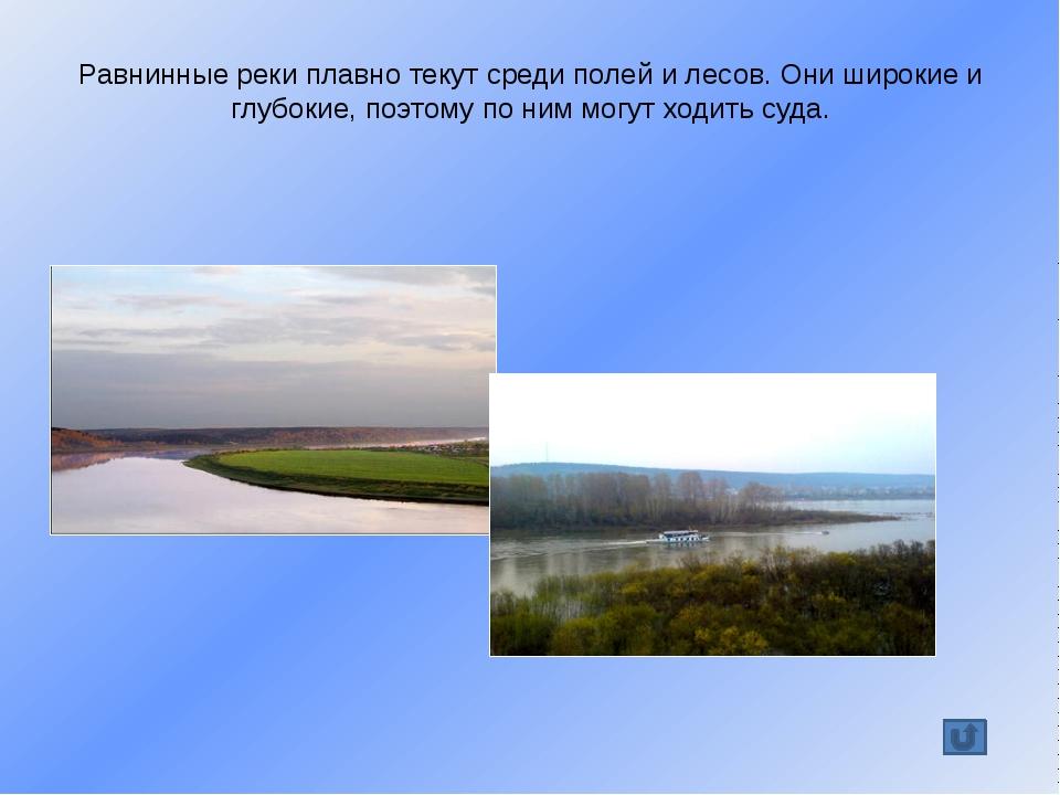 Томь имеет 115 притоков. Самые крупные – Бельсу, Уса, Мрассу, Кондома; Верхня...
