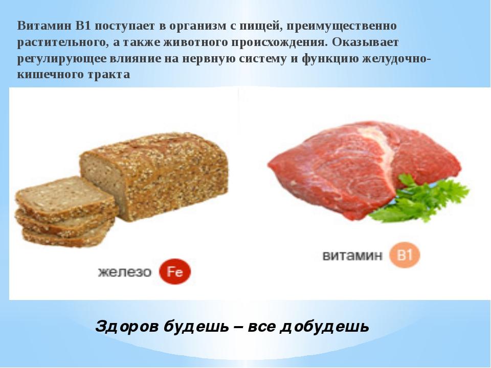 Здоров будешь – все добудешь Витамин B1 поступает в организм с пищей, преиму...