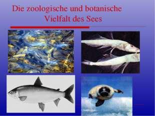 Die zoologische und botanische Vielfalt des Sees