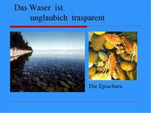 Das Waser ist unglaubich trasparent Die Epischura