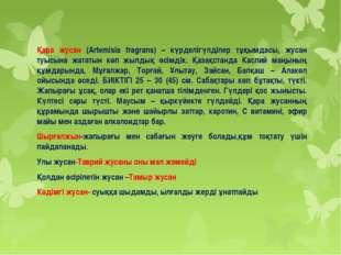 Қара жусан (Artemіsіa fragrans) – күрделігүлділер тұқымдасы, жусан туысына ж