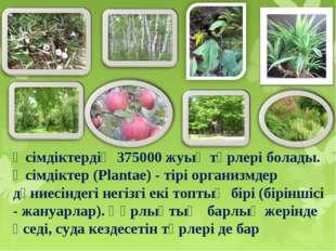 Өсімдіктердің 375000 жуық түрлері болады. Өсімдіктер (Plantae) - тірі органи