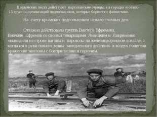 На счету крымских подпольщиков немало славных дел. Отважно действовала груп