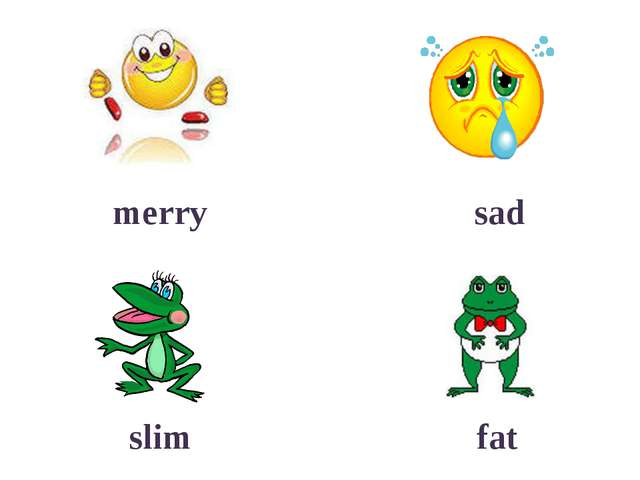 merry sad slim fat