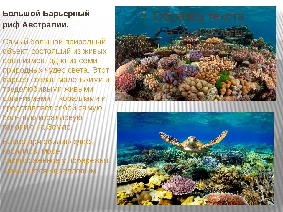 Большой Барьерный рифАвстралии. Самый большой природный объект, состоящий из...