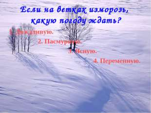 Если на ветках изморозь, какую погоду ждать? 1. Дождливую. 2. Пасмурную. 3. Я