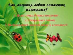 Как лягушка ловит летающих насекомых? 1. Ждет, пока близко подлетит. 2. Накры