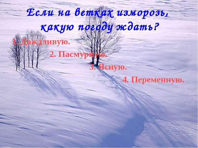 Если на ветках изморозь, какую погоду ждать? 1. Дождливую. 2. Пасмурную. 3. Я...