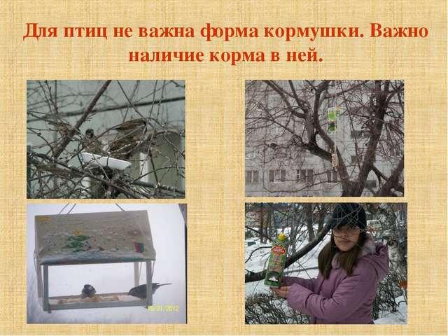 Для птиц не важна форма кормушки. Важно наличие корма в ней.