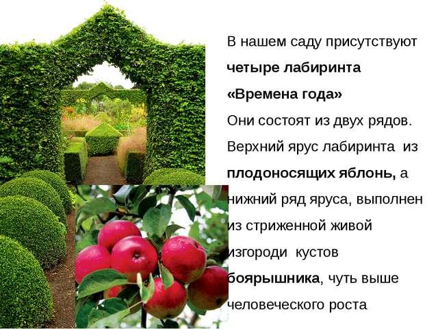 В нашем саду присутствуют четыре лабиринта «Времена года» Они состоят из дву...