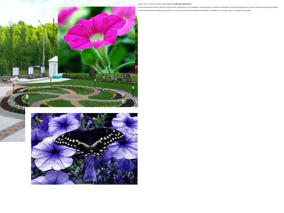 В нашем саду все объекты между собой соединены садовыми дорожками Цветники в...